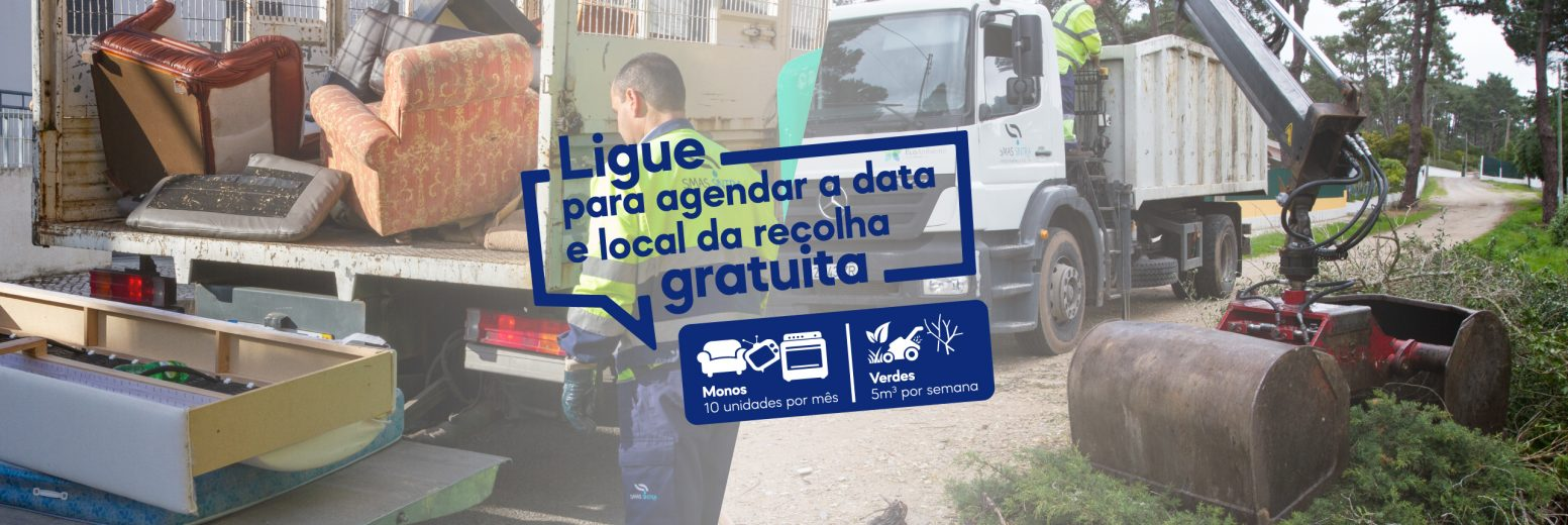 "Sintra aumenta recolha gratuita de resíduos volumosos e ""verdes"""